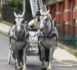 Horse and buggy ride through Jim Thorpe, Pennsylvania below the Appalachian Mountains