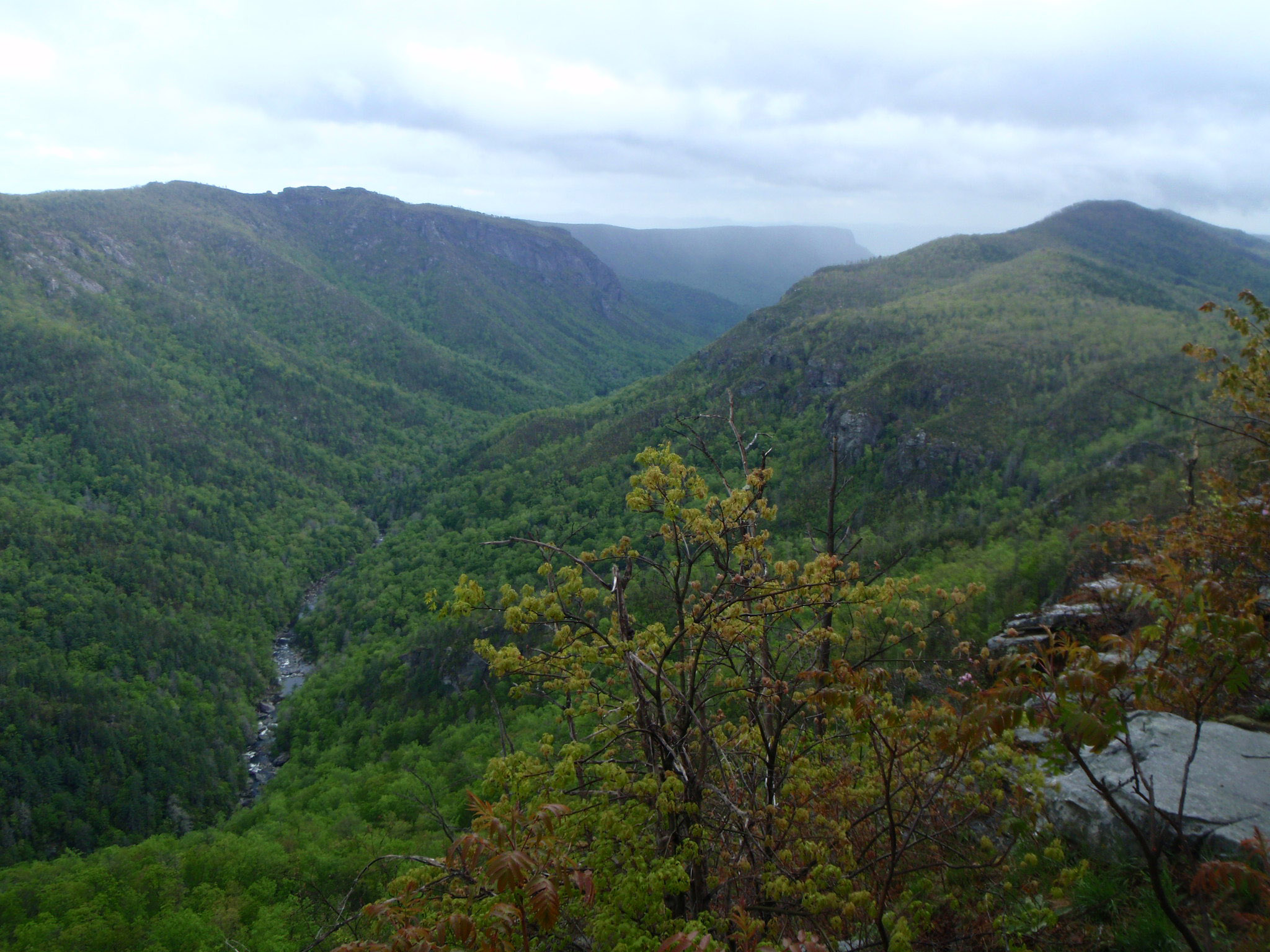 Linville Gorge: The Grand Canyon of the East